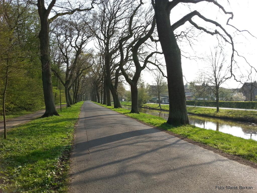 Park w Bremie
